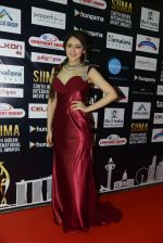 at SIIMA 2016 DAY 1 red carpet on 30th June 2016 (19)_57761662da9ee.JPG
