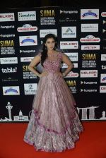 at SIIMA 2016 DAY 1 red carpet on 30th June 2016 (21)_57761664ac3a4.JPG