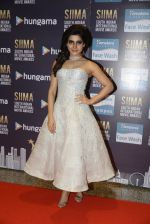 at SIIMA 2016 DAY 1 red carpet on 30th June 2016 (213)_577616d725f0e.JPG