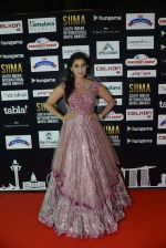 at SIIMA 2016 DAY 1 red carpet on 30th June 2016 (22)_577616659d0f7.JPG