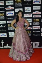at SIIMA 2016 DAY 1 red carpet on 30th June 2016 (23)_5776166661aab.JPG