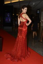 at SIIMA 2016 DAY 1 red carpet on 30th June 2016 (230)_577616dd4d7dd.JPG