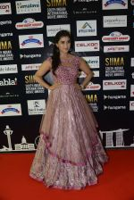 at SIIMA 2016 DAY 1 red carpet on 30th June 2016 (24)_577616675d7a5.JPG