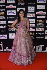 at SIIMA 2016 DAY 1 red carpet on 30th June 2016 (25)_577616683844d.JPG