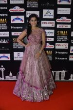 at SIIMA 2016 DAY 1 red carpet on 30th June 2016 (26)_57761668ec427.JPG