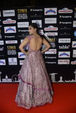 at SIIMA 2016 DAY 1 red carpet on 30th June 2016 (28)_5776166a6d863.JPG