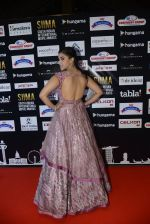 at SIIMA 2016 DAY 1 red carpet on 30th June 2016 (29)_5776166b17032.JPG