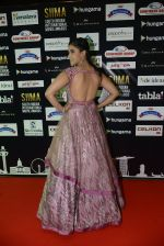 at SIIMA 2016 DAY 1 red carpet on 30th June 2016 (30)_5776166be0f9a.JPG