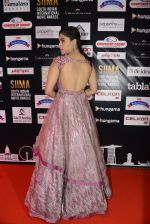 at SIIMA 2016 DAY 1 red carpet on 30th June 2016 (31)_5776166cb6218.JPG