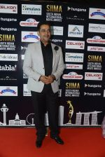 at SIIMA 2016 DAY 1 red carpet on 30th June 2016 (34)_5776166f03891.JPG