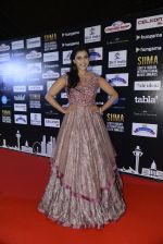 at SIIMA 2016 DAY 1 red carpet on 30th June 2016 (37)_5776167152347.JPG