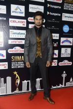 at SIIMA 2016 DAY 1 red carpet on 30th June 2016 (39)_57761672ee04b.JPG
