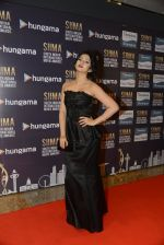 at SIIMA 2016 DAY 1 red carpet on 30th June 2016 (4)_5776165698700.JPG