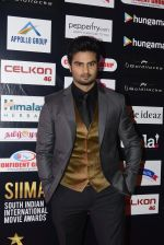 at SIIMA 2016 DAY 1 red carpet on 30th June 2016 (41)_57761674ba1d1.JPG