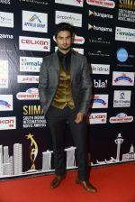 at SIIMA 2016 DAY 1 red carpet on 30th June 2016 (42)_57761675909b0.JPG