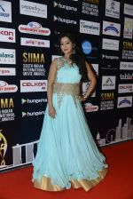 at SIIMA 2016 DAY 1 red carpet on 30th June 2016 (43)_5776167670354.JPG