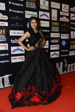 at SIIMA 2016 DAY 1 red carpet on 30th June 2016 (45)_577616785b951.JPG