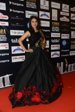 at SIIMA 2016 DAY 1 red carpet on 30th June 2016 (46)_5776167949fb5.JPG