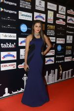 at SIIMA 2016 DAY 1 red carpet on 30th June 2016 (48)_5776167b17a81.JPG