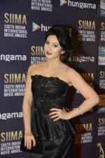 at SIIMA 2016 DAY 1 red carpet on 30th June 2016 (5)_57761657540cf.JPG