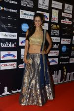 at SIIMA 2016 DAY 1 red carpet on 30th June 2016 (59)_577616890d165.JPG