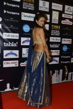 at SIIMA 2016 DAY 1 red carpet on 30th June 2016 (60)_5776168995e9a.JPG