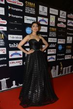 at SIIMA 2016 DAY 1 red carpet on 30th June 2016 (62)_5776168b28ec7.JPG