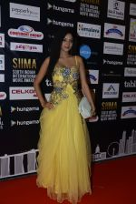 at SIIMA 2016 DAY 1 red carpet on 30th June 2016 (79)_5776168f77230.JPG