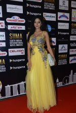 at SIIMA 2016 DAY 1 red carpet on 30th June 2016 (80)_577616905e38b.JPG
