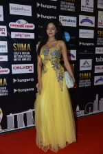 at SIIMA 2016 DAY 1 red carpet on 30th June 2016 (81)_5776169127d35.JPG