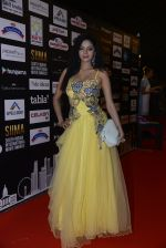 at SIIMA 2016 DAY 1 red carpet on 30th June 2016 (82)_57761691d8d34.JPG