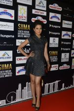 at SIIMA 2016 DAY 1 red carpet on 30th June 2016 (84)_577616930f016.JPG
