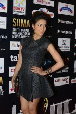 at SIIMA 2016 DAY 1 red carpet on 30th June 2016 (86)_577616943519b.JPG