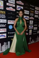 at SIIMA 2016 DAY 1 red carpet on 30th June 2016 (88)_57761695660da.JPG