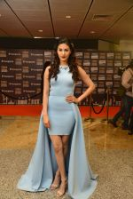 Amyra Dastur at SIIMA Awards 2016 Red carpet day 2 on 1st July 2016