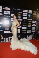 Bhumika Chawla at SIIMA Awards 2016 Red carpet day 2 on 1st July 2016 (118)_57776de3a8086.JPG