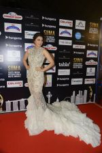 Bhumika Chawla at SIIMA Awards 2016 Red carpet day 2 on 1st July 2016