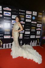 Bhumika Chawla at SIIMA Awards 2016 Red carpet day 2 on 1st July 2016 (116)_57776de21bc2e.JPG