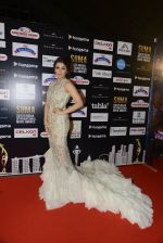 Bhumika Chawla at SIIMA Awards 2016 Red carpet day 2 on 1st July 2016 (117)_57776de2e1445.JPG