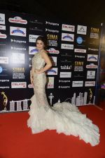 Bhumika Chawla at SIIMA Awards 2016 Red carpet day 2 on 1st July 2016 (119)_57776de4e16e2.JPG