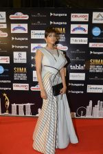 Lakshmi Manchu at SIIMA Awards 2016 Red carpet day 2 on 1st July 2016