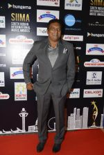 Prakash Raj at SIIMA Awards 2016 Red carpet day 2 on 1st July 2016 (62)_57776e12e4491.JPG