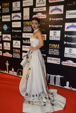 Radhika Apte at SIIMA Awards 2016 Red carpet day 2 on 1st July 2016 (132)_57776e321289d.JPG