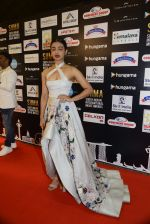 Radhika Apte at SIIMA Awards 2016 Red carpet day 2 on 1st July 2016 (141)_57776e3b06d5d.JPG