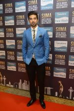 Saqib Saleem at SIIMA Awards 2016 Red carpet day 2 on 1st July 2016 (284)_57776e526a24d.JPG