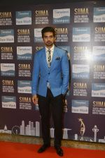 Saqib Saleem at SIIMA Awards 2016 Red carpet day 2 on 1st July 2016 (285)_57776e5302f54.JPG