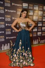 Shriya Saran at SIIMA Awards 2016 Red carpet day 2 on 1st July 2016