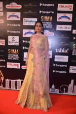 Sonal Chauhan at SIIMA Awards 2016 Red carpet day 2 on 1st July 2016 (13)_57776e73d45bd.JPG