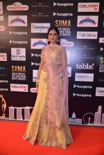 Sonal Chauhan at SIIMA Awards 2016 Red carpet day 2 on 1st July 2016 (15)_57776e76392e3.JPG