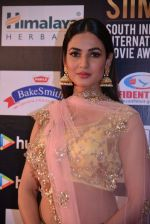 Sonal Chauhan at SIIMA Awards 2016 Red carpet day 2 on 1st July 2016 (33)_57776e79862e1.JPG